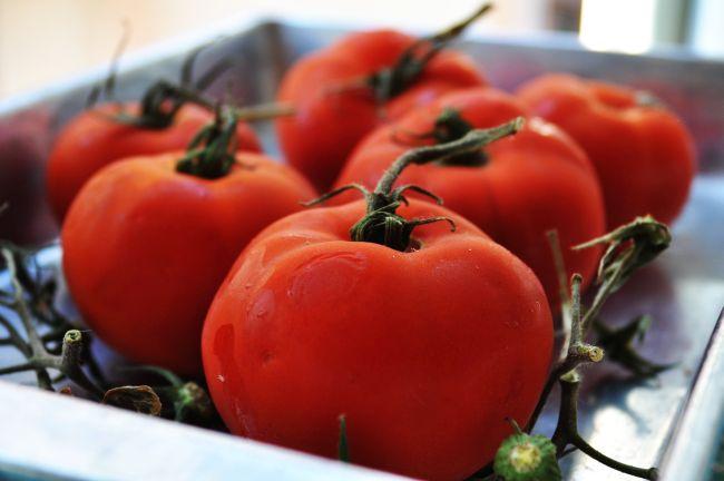Pomodori Imbottiti di Riso 4
